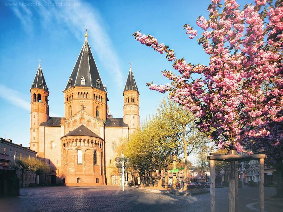 Mainzer Dom Fotofarmer